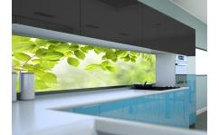Panel szklany do kuchni LEAFS