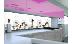 Panel szklany do kuchni DMUCHAWCE