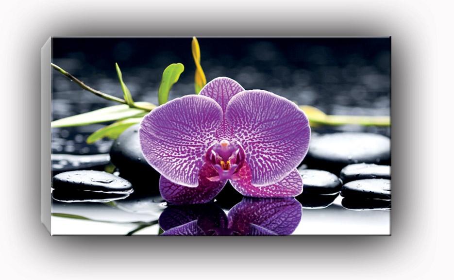 dekor szklany do kuchni i �azienki purple orchid magic