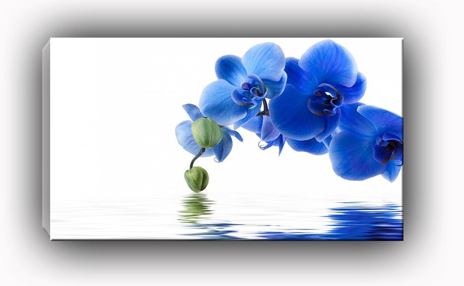 dekor szklany do kuchni i �azienki niebieski storczyk ii