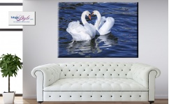 Obraz canvas THE SWANS