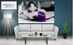 Obraz canvas I LOVE MY HUSKY