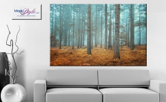 Obraz canvas MAGIC FOREST las