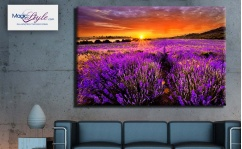 Obraz canvas LAVENDER SUNSET