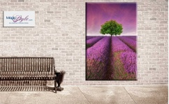 Obraz Pop Board TREE ON LAVENDER FIELD
