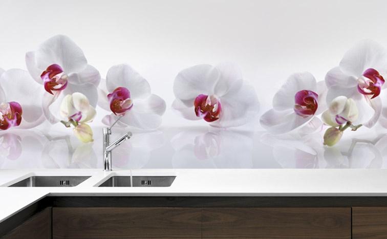Panel szklany do kuchni STORCZYKI BIAŁO  RÓŻOWE  Magic   -> Fototapety Kuchenne Storczyk