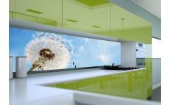 Panel szklany do kuchni DANDELION II